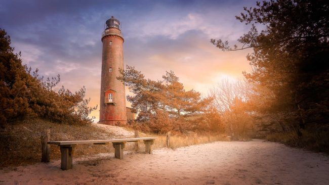 Der Leuchturm des Natureums auf dem Darss